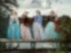 Das Quartett Salut Salon